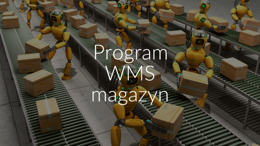 Program WMS magazyn