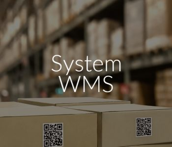 System WMS