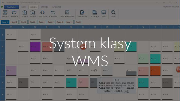 System klasy WMS