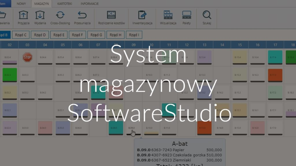 System magazynowy SoftwareStudio