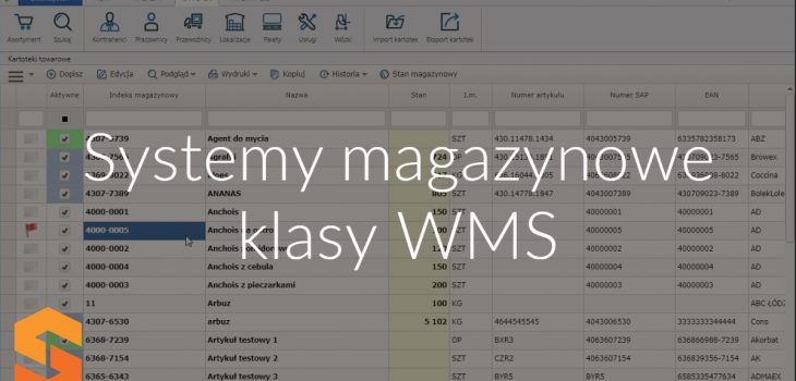 Systemy magazynowe klasy WMS