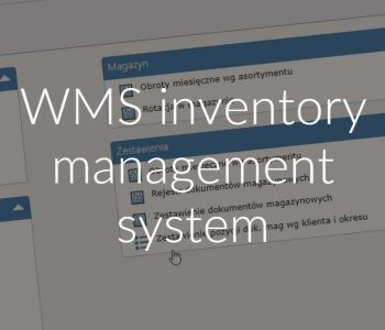 WMS inventory management system