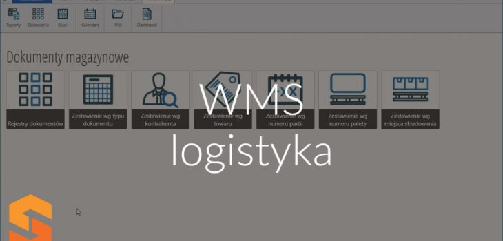 WMS logistyka
